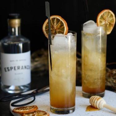 Rooibos & Honey Cocktail Recipe | SideChef