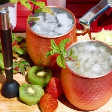 Gin Fresh Fruit Fizz Cocktail Recipe   SideChef