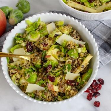 Warm Quinoa and Lentil Salad Recipe   SideChef