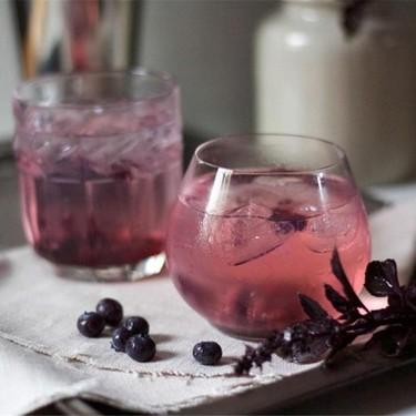 Blueberry and Black Basil Gin Fizz Recipe | SideChef