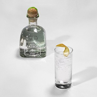 Tequila and Tonic Recipe | SideChef