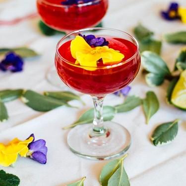 Hibiscus Gin Gimlet Recipe   SideChef