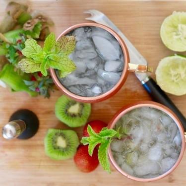 Gin Fresh Fruit Fizz Cocktail Recipe | SideChef
