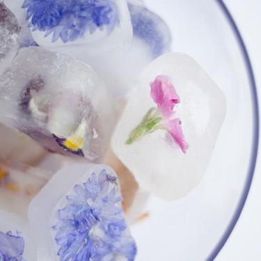 Elderflower and Edible Flower Ice Cubes Recipe | SideChef