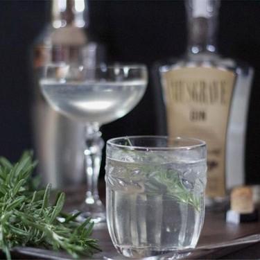 Rosemary Gin and Tonic Recipe | SideChef